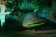 umělé akvárium